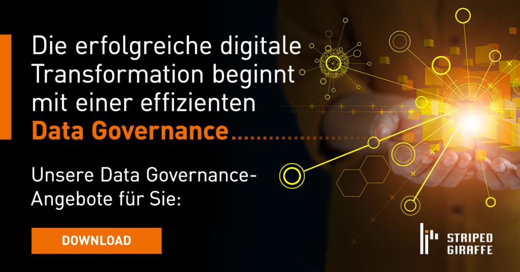 data governance, frame work
